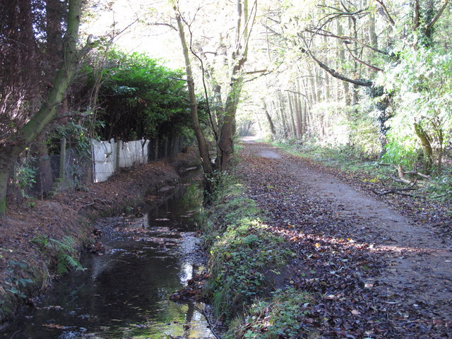 The Kyd Brook - East Branch, west of Monks Way, BR5