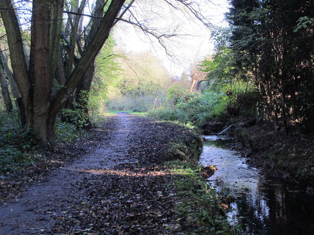 The Kyd Brook - East Branch, west of Monks Way, BR5 (2)