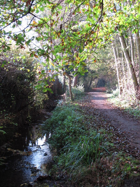 The Kyd Brook - East Branch, west of Monks Way, BR5 (4)