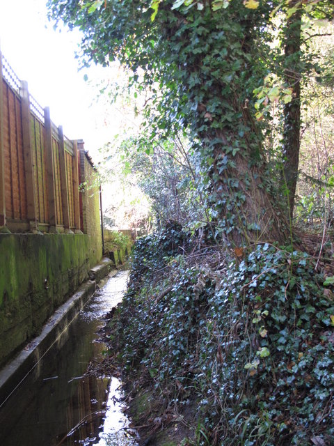 The Kyd Brook - East Branch, west of St. Thomas' Drive, BR5 (2)