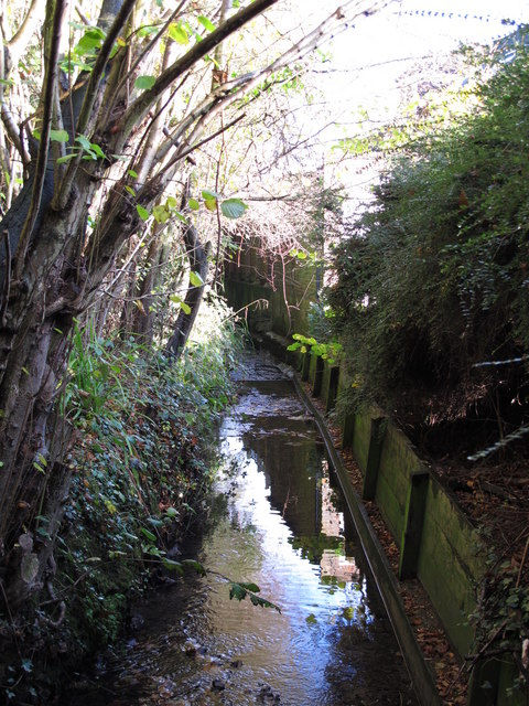 The Kyd Brook - East Branch, west of St. Thomas' Drive, BR5 (3)