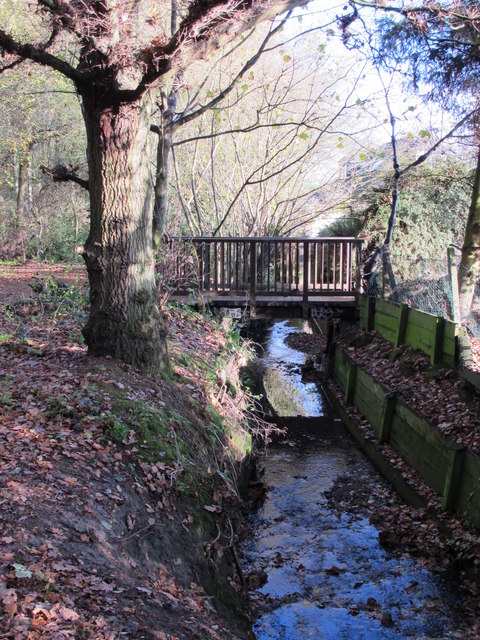 The Kyd Brook - East Branch, west of St. Thomas' Drive, BR5 (5)