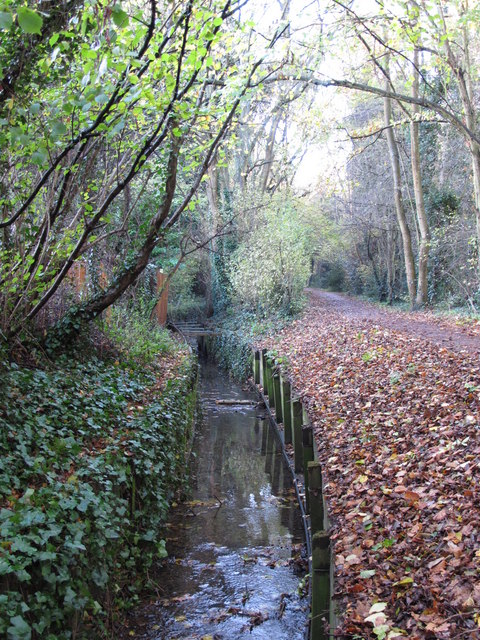 The Kyd Brook - East Branch, west of St. Thomas' Drive, BR5 (6)