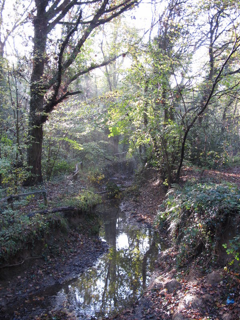 The Kyd Brook - East Branch, on Gumping Common (3)