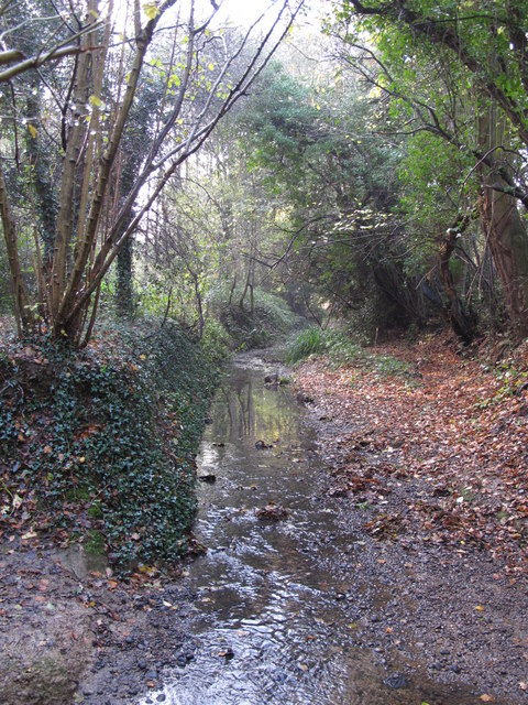 The Kyd Brook - East Branch, on Gumping Common (4)