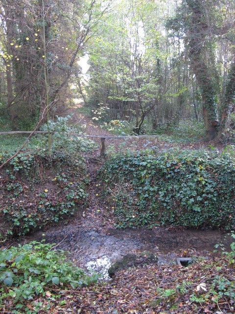 The Kyd Brook - East Branch, on Gumping Common (5)