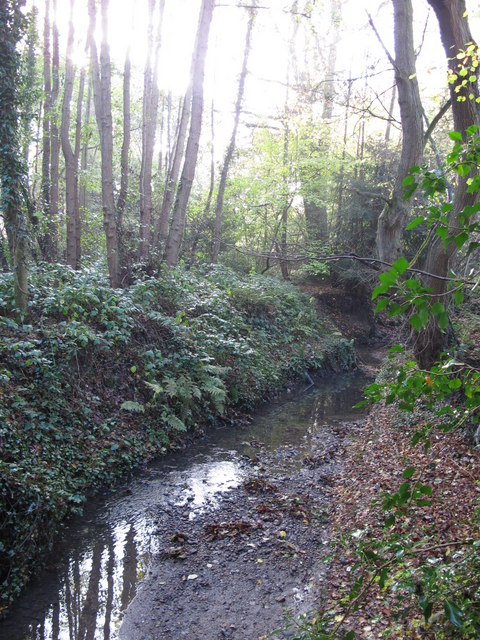 The Kyd Brook - East Branch, on Gumping Common (7)