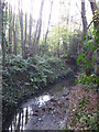TQ4466 : The Kyd Brook - East Branch, on Gumping Common (7) by Mike Quinn