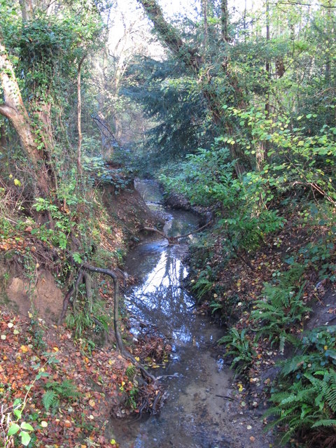 The Kyd Brook - East Branch, on Gumping Common (8)