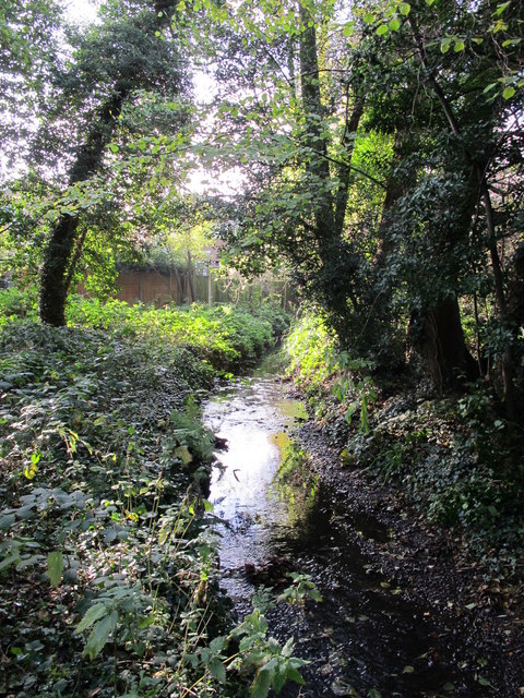 The Kyd Brook - East Branch, on Gumping Common (2)