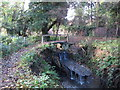 TQ4465 : Footbridge over the Kyd Brook - East Branch, on Gumping Common (2) by Mike Quinn