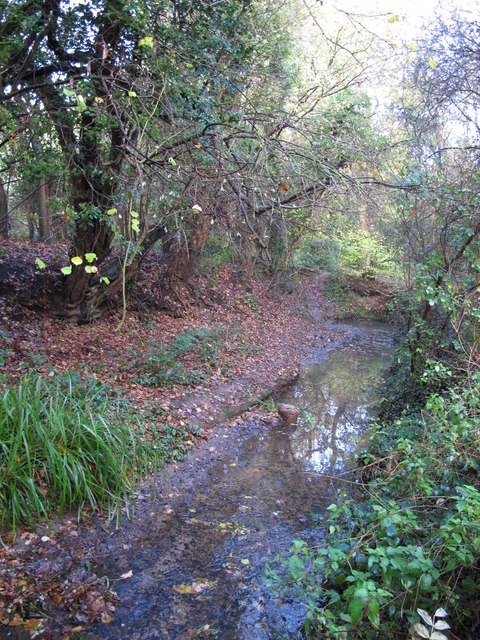 The Kyd Brook - East Branch, on Gumping Common (9)