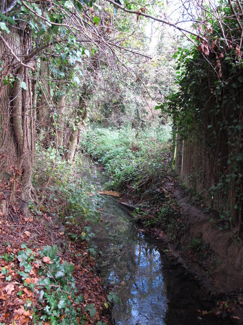 The Kyd Brook - East Branch, west of Clareville Road, BR6 (2)