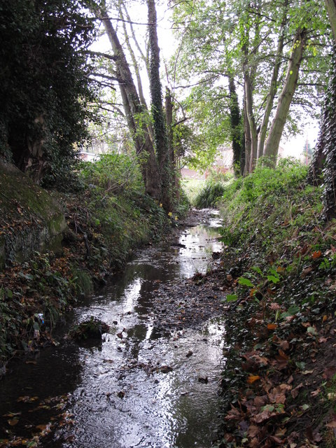 The Kyd Brook - East Branch, west of Clareville Road, BR6 (3)