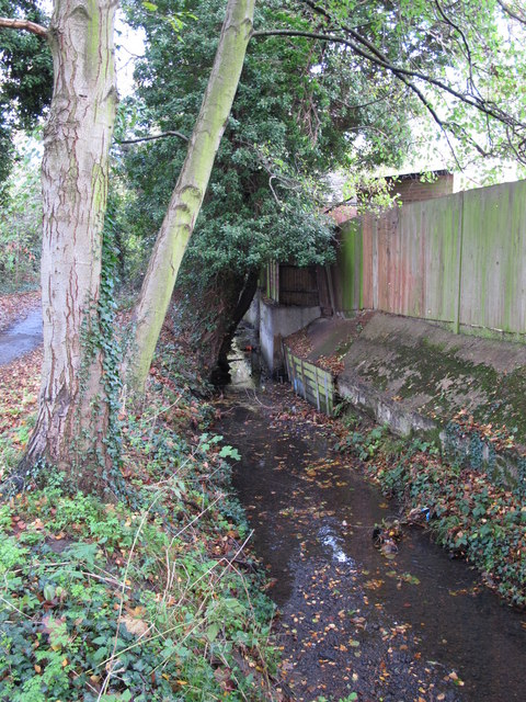 The Kyd Brook - East Branch, west of Clareville Road, BR6 (4)