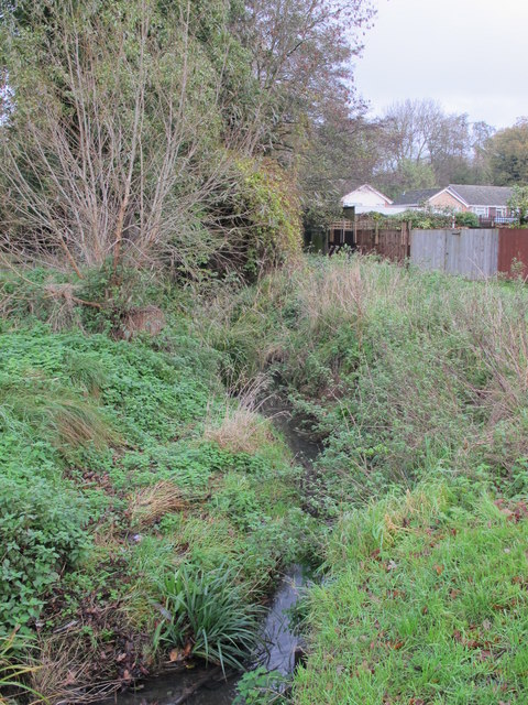 The Kyd Brook - East Branch, north of Crofton Road (A232), BR6 (2)