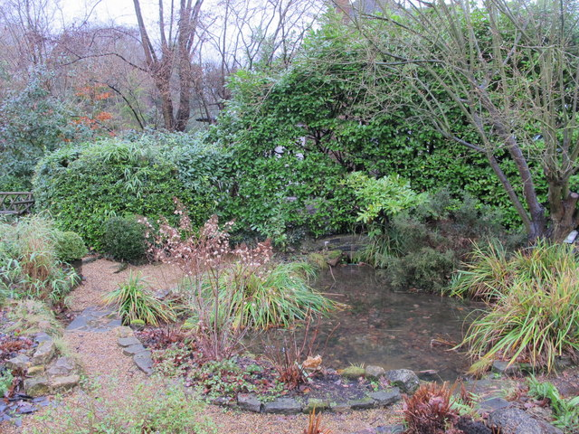 Minor tributary of the Kyd Brook - Main Branch, Ninhams Wood, BR6 (2)