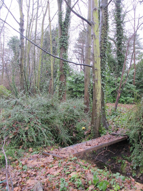 Footbridge over the Kyd Brook - Main Branch, south of the A21
