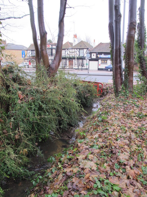 The Kyd Brook - Main Branch, south of the A21 (2)