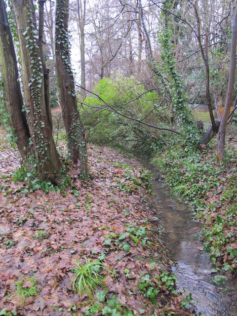 The Kyd Brook - Main Branch, south of the A21 (3)