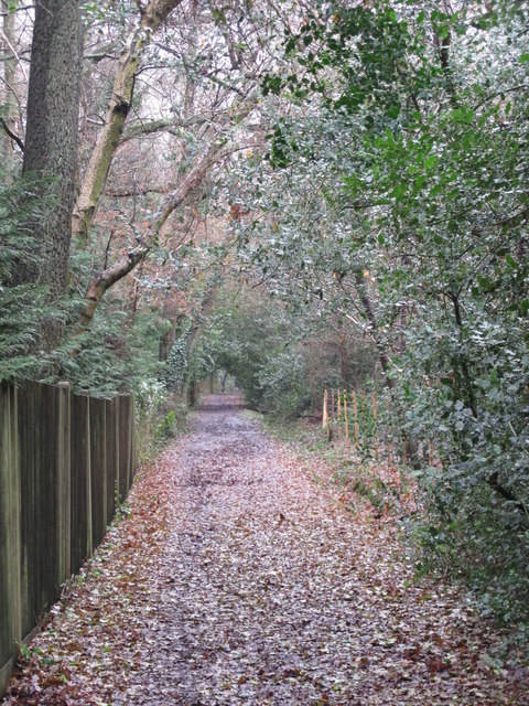 Bridleway south of Holwood Park Avenue, BR6