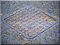 J3169 : Manhole cover, Belfast by Rossographer