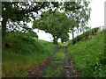 SK4180 : Uphill track near Plumbley by Andrew Hill