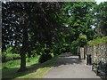 TR3357 : Mill Wall Path by David Anstiss