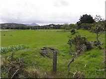 B9029 : Cnoc na hArdagh Bige by Kenneth  Allen