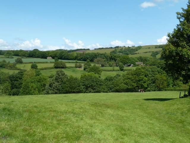 Countryside north of Unthank