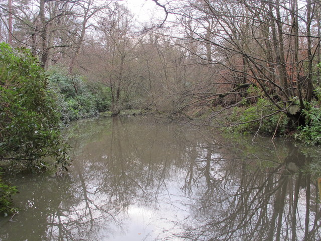 Small lake in Lake Wood