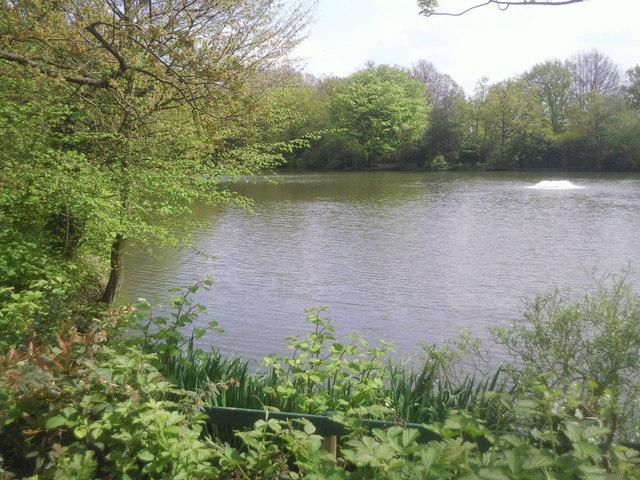 Crystal palace park fishing lake marathon cc by sa 2 0 for Crystal lake fishing