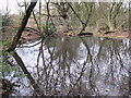 TQ4263 : Pond at the southern end of Lake Wood (2) by Mike Quinn