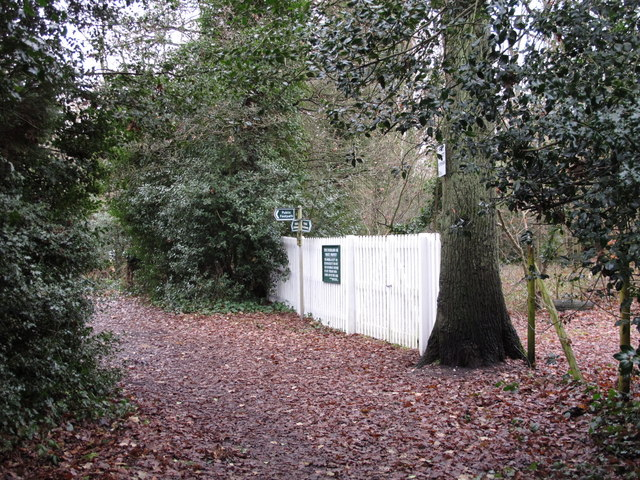 Bridleway south of Holwood Park Avenue, BR6 (2)