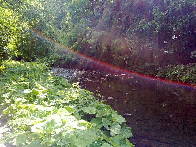 River Medlock Steven Haslington Geograph Britain And