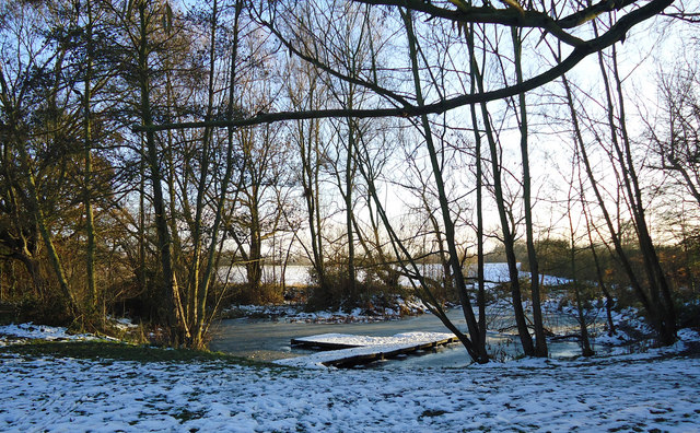 Winter view, edge of Little Brick Kiln Wood, Belhus