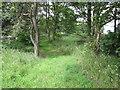 SJ4472 : Footpath near Wimbolds Trafford by Jeff Buck