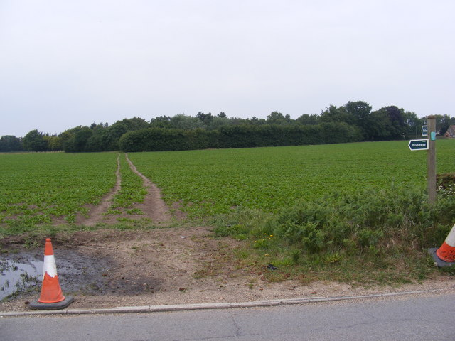 Footpath to Newbourne Road