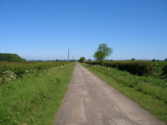 Borough Mere Lane