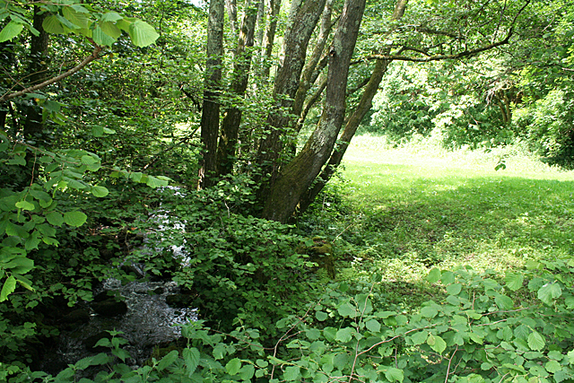 Lustleigh: Wrey Brook
