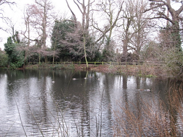 Lake south of Hollydale Recreation Grounds (8)