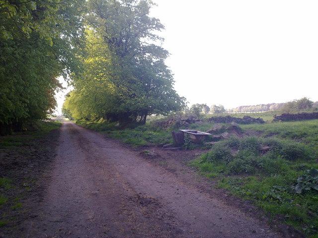 Lane near Crookhall Farm