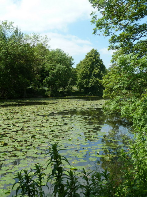 Lake in Ringwood Park