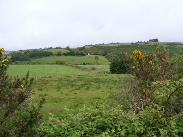 Farmland north of R586 road - Clodagh and Derrynagree East Townlands