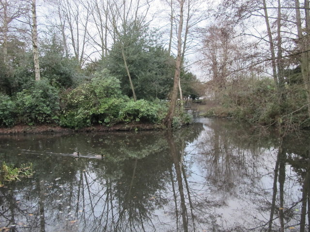 Pond, Pickhurst Lane Recreation Gardens (4)