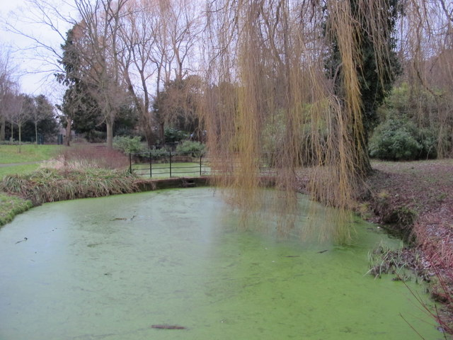 Pond, Hayes Recreation Gardens (4)