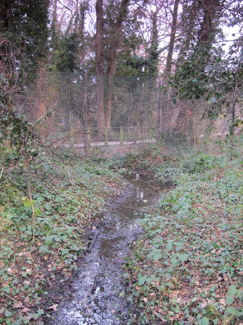 Minor tributary of the Kyd Brook, Darrick Wood (4)