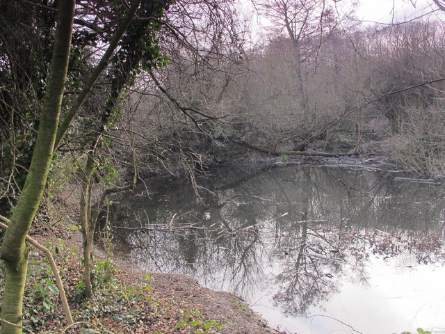 Pond in Darrrick Wood