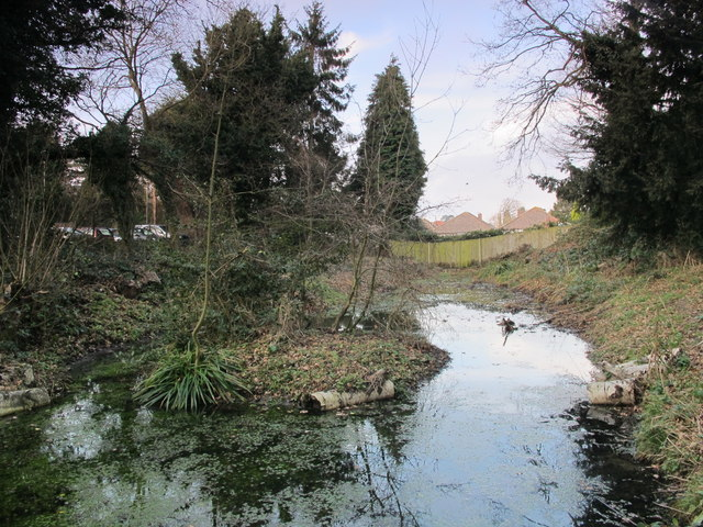 Small pond on a minor tributary of the Kyd Brook, Darrick Wood (2)