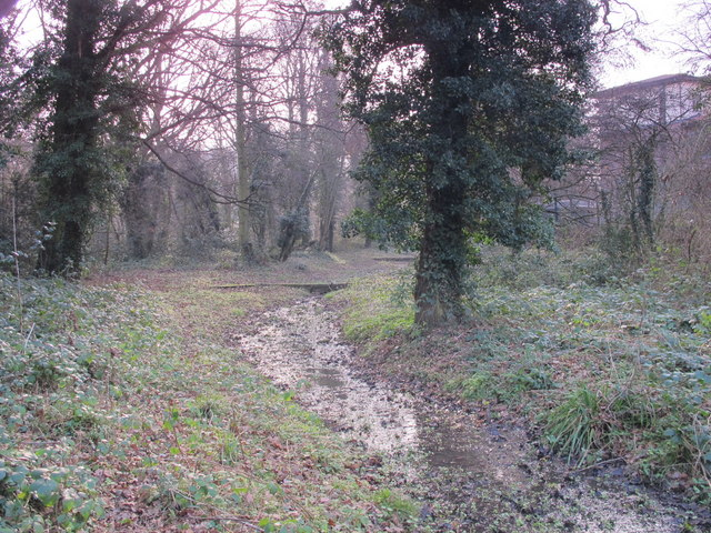Minor tributary of the Kyd Brook, Darrick Wood (6)